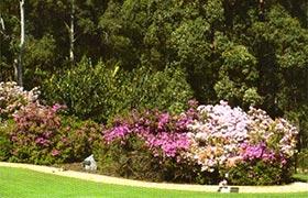 Memorial Feature Garden